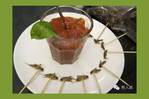 高能預警:30種可以吃且美味的蟲子