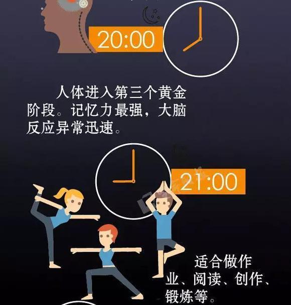 人體器官24小時工作表,是否對上了你的表?