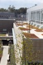 CBEIS Green Roof in the Fall