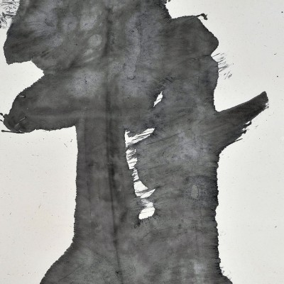 2009, ink on paper, 71 x 35.5 inches