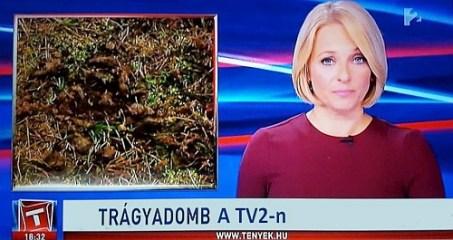 Vádlottak padján a TV2 sztárjai