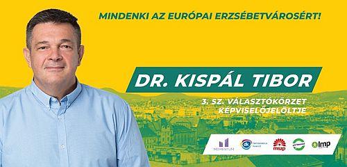 Képviselő-jelöltek: Kispál Tibor