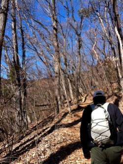 景信山への登り