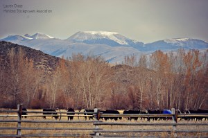 Cam Cooper Talon Ranch Mountains.jpg