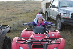 Charley Nissen is practicing her driving skills during weaning 2014!