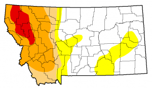 Montana Drought Monitor November 12