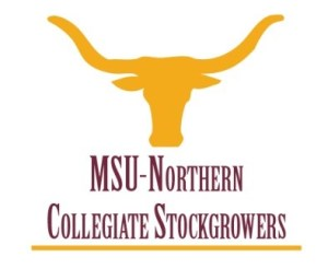 MSU Northern Collegiate Logo Square