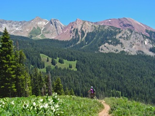 Singletrack near Crested Butte, Colorado