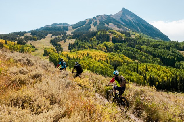 columbine hill trail at evolution bike park