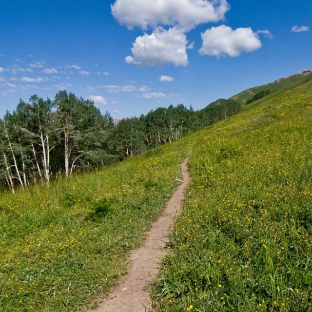 Deer Creek Trail Views in Crested Butte, CO