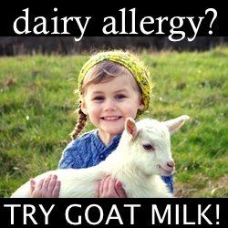 goat milk dairy allergy