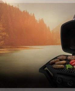Napoleon TravelQ™ Portable Gas Grill PRO285