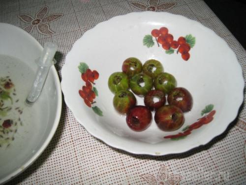 Устройства для чистки яблок и крыжовника из медицинских шприцов