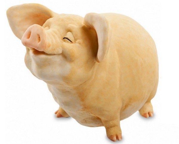 2019 год желтой свиньи: чего ждать? Характеристика и особенности. Положительное и чего стоит опасаться