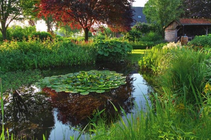 Искусственный пруд со стоячей водой - неотъемлемая часть современного ландшафтного дизайна.