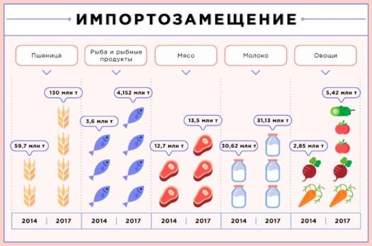 Владимир Путин знал, что делает: импортозамещение вытянуло экономику РФ из рецессии