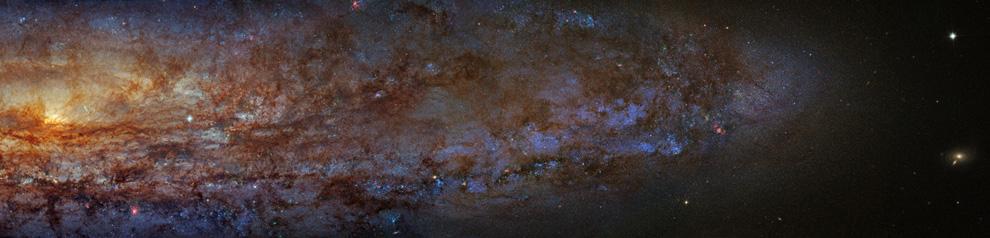711 Роберт Гендлер: Вселенная в цвете