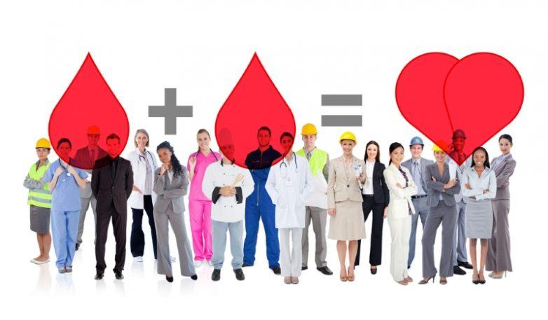 10 интересных фактов о кровеносной системе