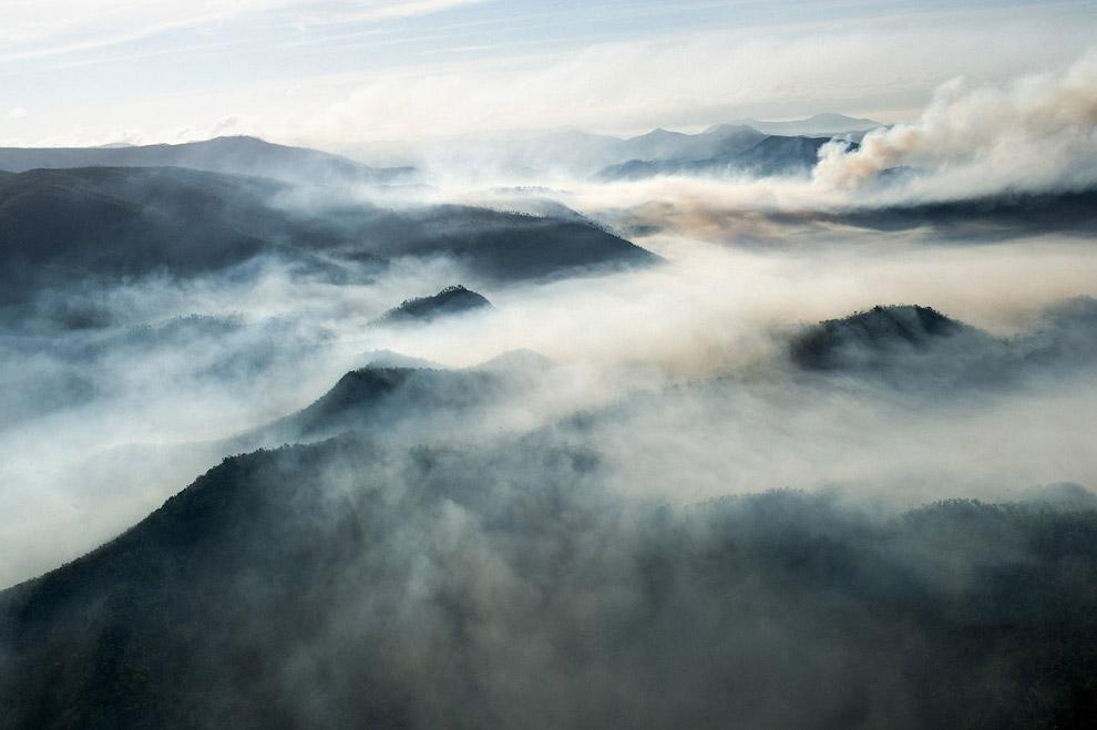Туман в Национальном парке Сьерра-дель-Кристаль