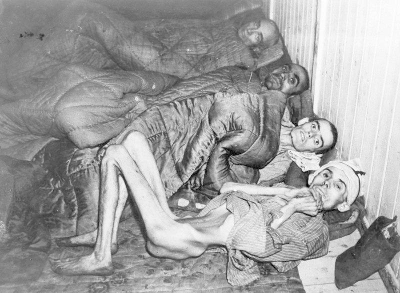 Ужасы Освенцима. Фото узников