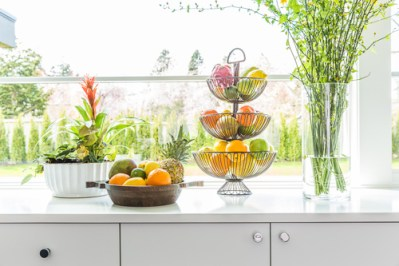 kitchen plantlife for countertops