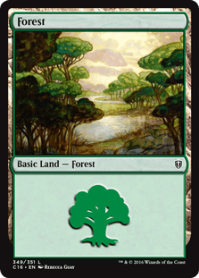 ana-065-forest