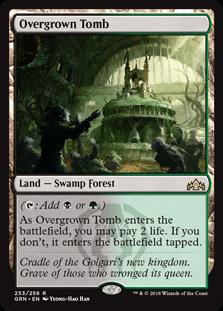 grn-253-overgrown-tomb