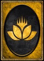 Rare Wildcard