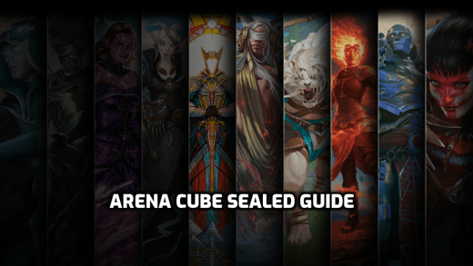 Arena Cube Sealed Guide