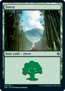 Walls Forest