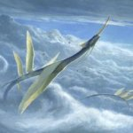 Yorion-Sky-Nomad-Art-by-Steve-Belledin