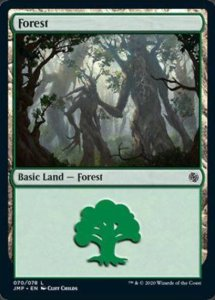 jmp-70-forest