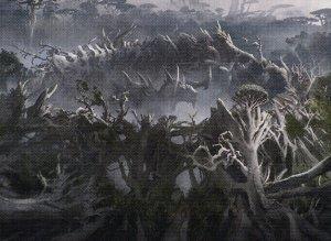 Deck Archetypes