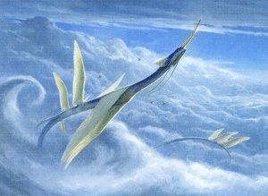 iko-232-yorion-sky-nomad