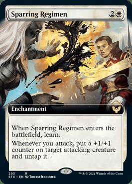 STX 293 Sparring Regimen Extended Art