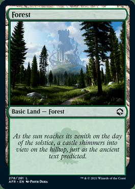 AFR 278 Forest Main