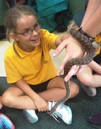 A close encounter for Hailey from Room 36
