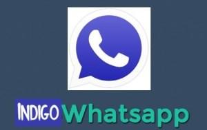 WhatsApp Indigo APK download latest version