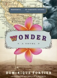 Wonder, by Doninique Fortier