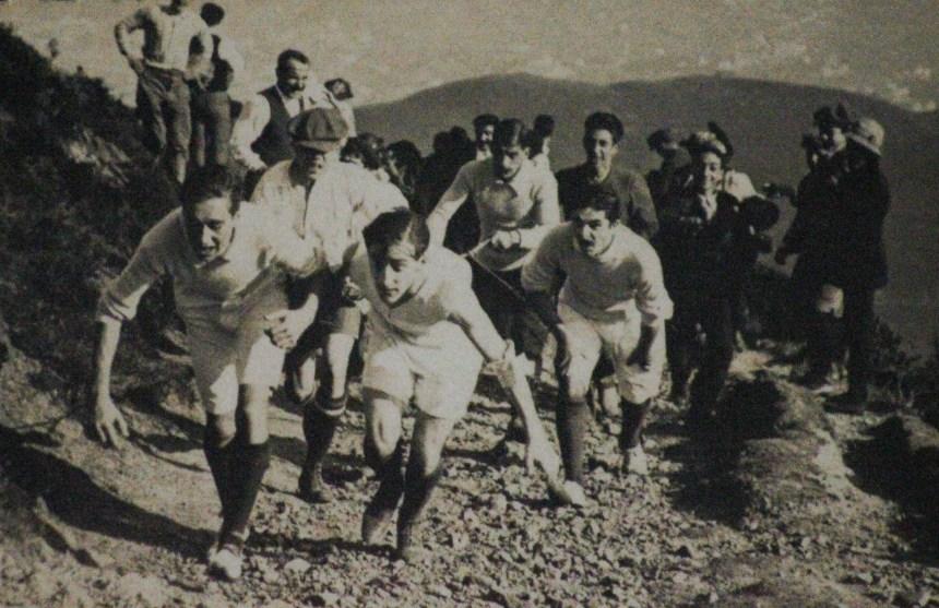 Copa Pegasus