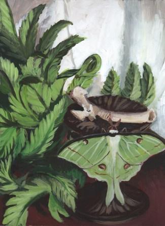 Moth and Ferns
