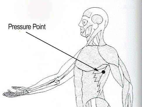 Jet Lag Pressure Point