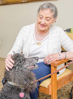 A Therapy Dog visits with an older woman