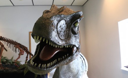 In addition to casts of fossils, the museum has sculptures and statues of life-sized dinosaurs, depicting what they would have looked like in the flesh. (Sidelines/Connor Burnard)