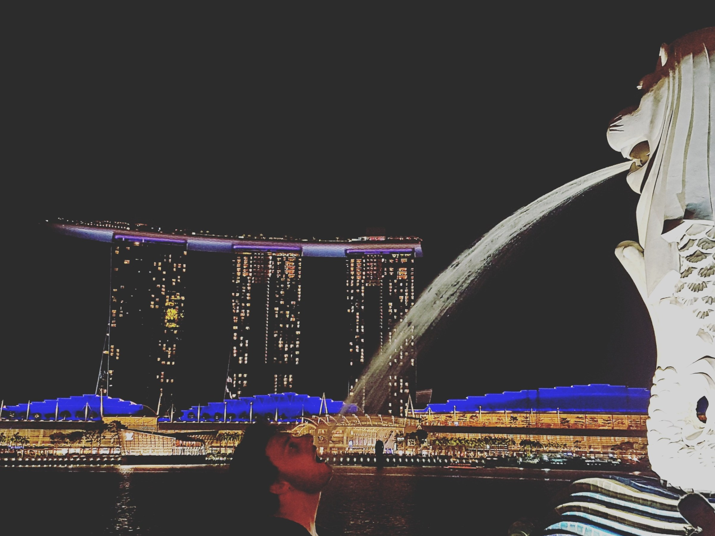 TW and the Merlion