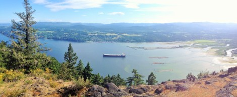 Cowichan Bay From Bench