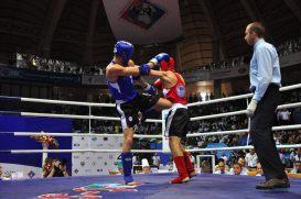 WC2011_finalDay_0027