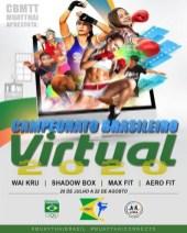 Virtual Championships 3