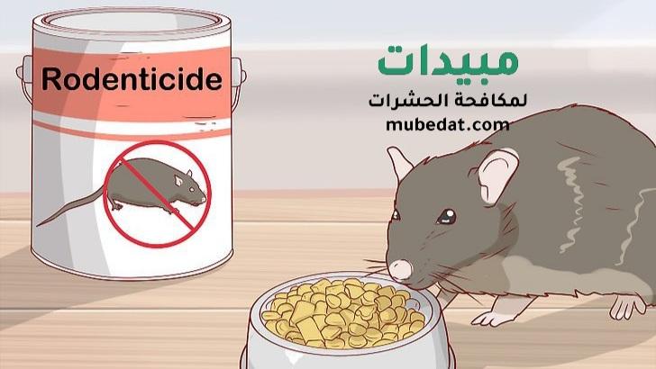 أفضل طرق تخلص الفئران