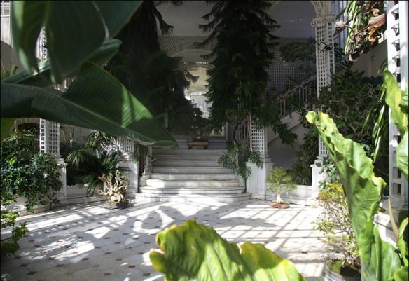 Greenhouse, Albert Kahn's garden; pic: Sreve Sampson